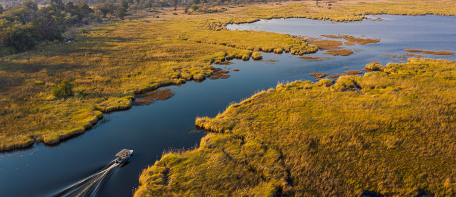 Drone image of a power boat cutting through the Okavango Delta