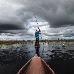 Okavango Delta, Mokoro-Einbaum, Poler